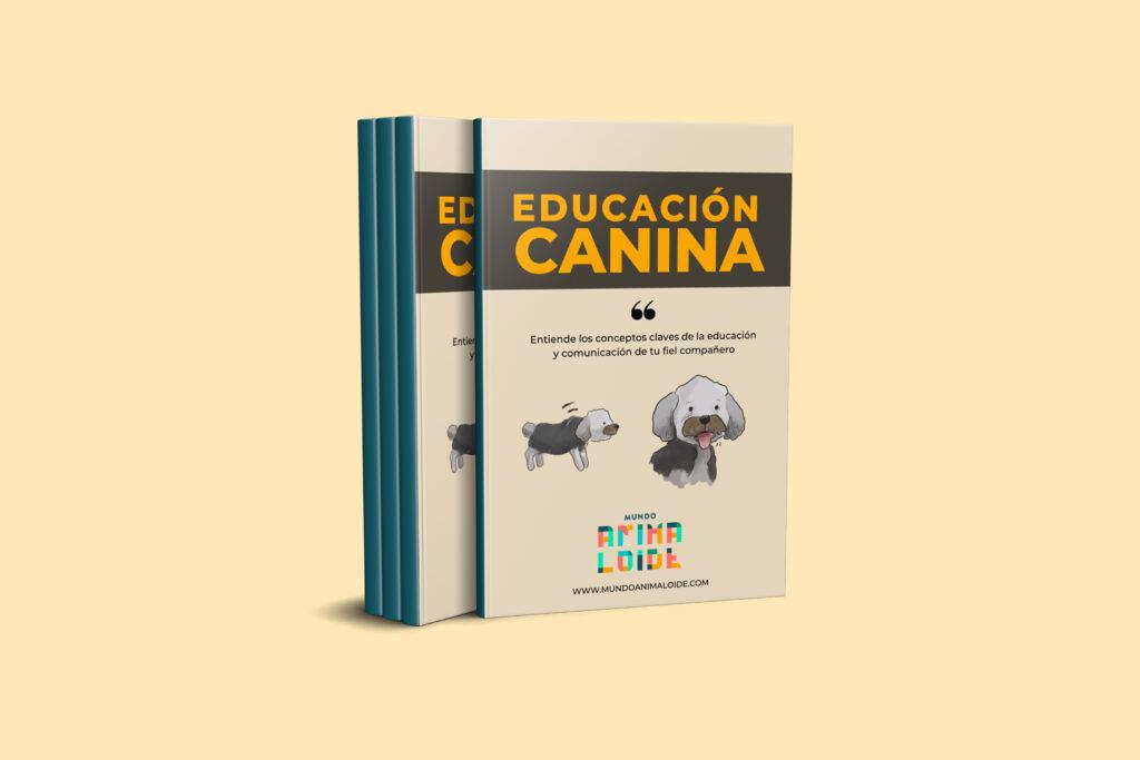 Ebook educación canina